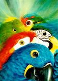 A colorful close-up - José Moreno Aparicio