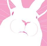 Madamma tumblr regardingcomic Bunny
