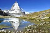 Summer-Gornergrat Bahn-Matterhorn
