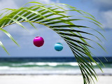 Christmas in the Keys Florida