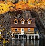 Qui Vidi - Newfoundland Canada