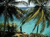 Jamaica_3051_600x450