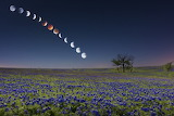 "Space tumblr wonders-of-the-cosmos ""Lunar eclipse over bluebonne"