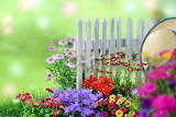 Flowers-fence-hat-summer