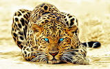 Leopard Crouch