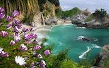 Waterfall-on-an-exotic-island
