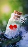 Bottled & Frozen