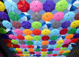 Color-umbrella-red-yellow-