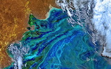 A phytoplankton bloom off the Atlantic coast of South Am.