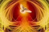 Pfingsten - Symbol die Taube