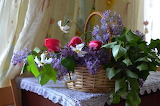 Basket, tulips, lilac, daffodils, table, window