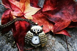 Owl time for fall season old clock leaves hd-wallpaper-1568037