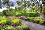 GardenNew1