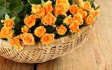 Flowers, petals, roses, basket