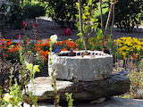Stone bird bath gathering place