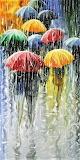 Colour In The Rain