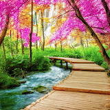 Colorful walking path!