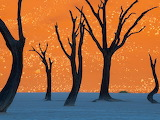 CamelThornTrees_Namibia