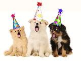#Dog Birthday Party Sing Along