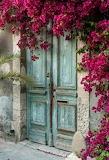 Vieille porte et fleurs roses