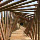 bamboo tree bridge