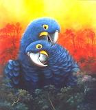 Cute Hyacinth Macaws - José Moreno Aparicio