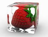 Fruitice