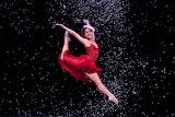 Ballerina at Christmas