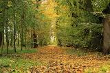 Jesienią w Oporowie