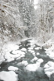Winter in Sol Duc