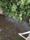 Sewage leak into Middle Brook