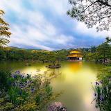 * Golden Pavilion...
