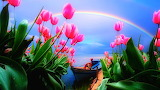 Blue boat amid flowers and under rainbow