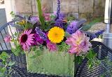 Flowers @ wallpaperscraft...