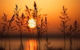 A Setting Sun...