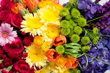Rainbow Floral Arrangement