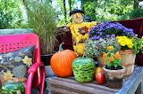 Autumn garden vignette