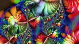 Psychedelic Fractal Design