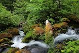 USA_Waterfalls_Stones_North_Umpqua_River_Oregon_513487_1280x853