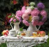 Lovely day-1576260