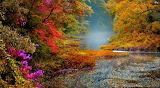 landscape-nature-lake