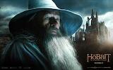 The Hobbit - The Desolation of Smaug - Gandalf
