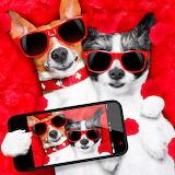Selfie Puppies...