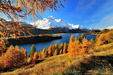 Canadian Lake in Mountains in Autumn