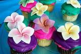 Sugar sweet cupcakes