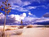 Desierto y cielo azul