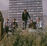 The Animals-Getty Images