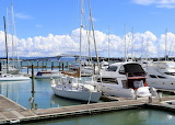 Bayswater Marina, Auckland NZ1-IMG 0051