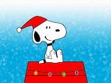 Charlie Brown Christmas 4
