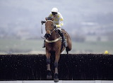 Charter Party and Richard Dunwoody 1988 Gold Cup